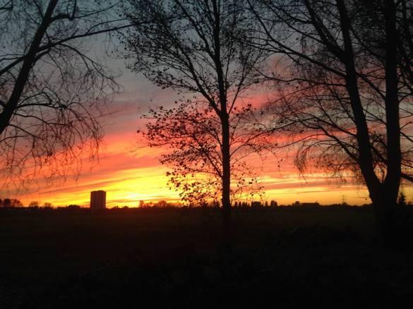 This was the sunset as we were running around Hackney Marsh